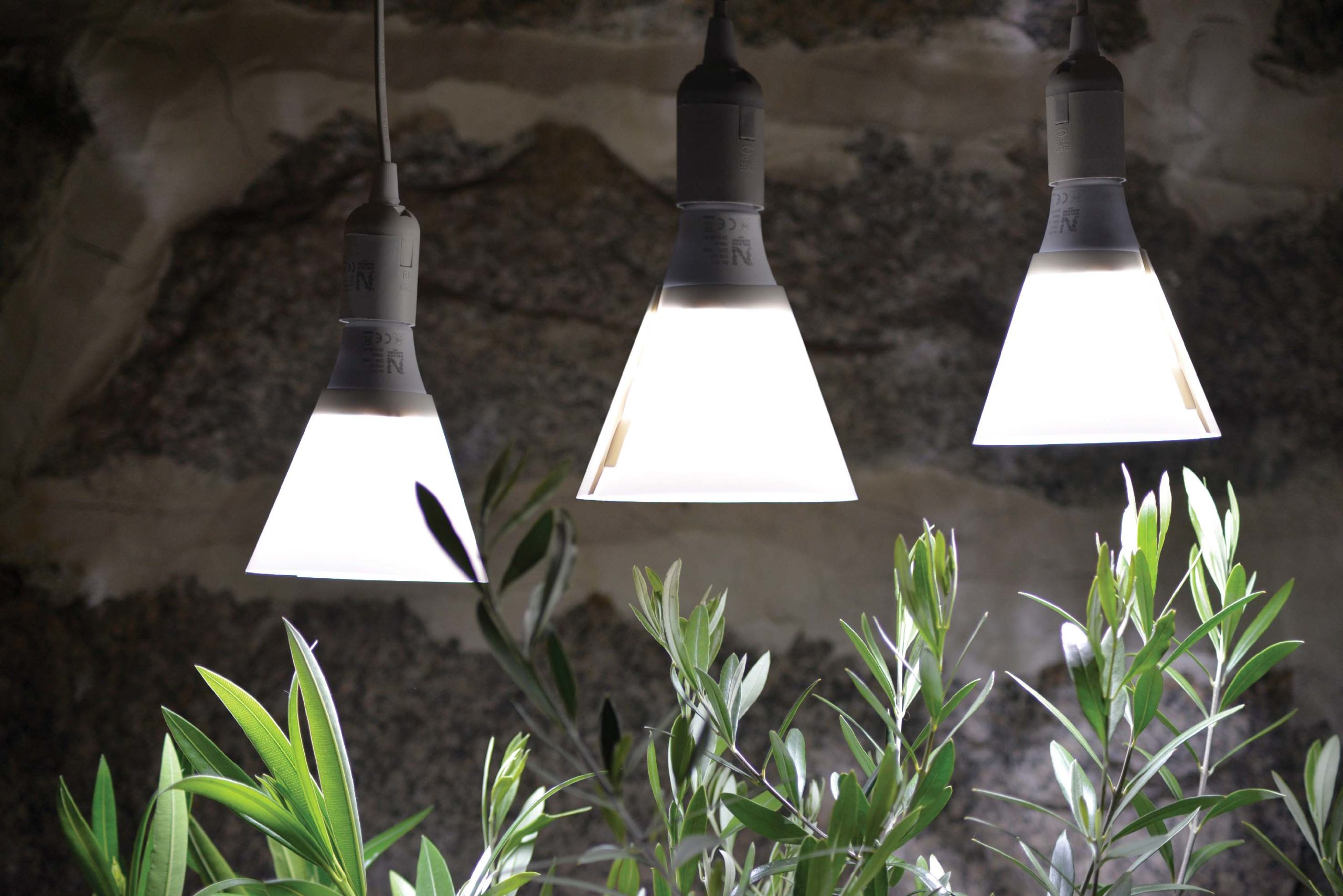 plant-led-light